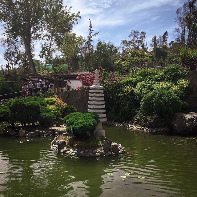 Con la family explorando el Jardín Japonés... no había gente bañándose ni haciendo picnic